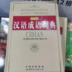 多功能汉语成语词典(修订版)