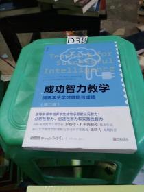 成功智力教学 提高学生学习效能与成绩(第二版)