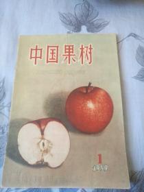 《中国果树》(创刊号1959)