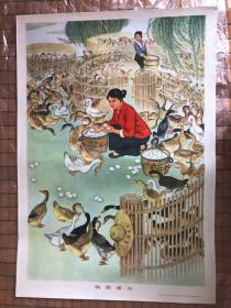 鸭肥蛋大 文革宣传画 两开 1975年。七五品800元,2张,另一张品相九五品(1300元)   湖南人民出版社
