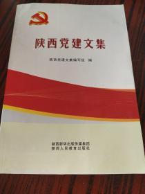 陕西党建文集
