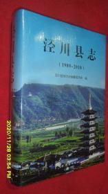 泾川县志(1989-2010)