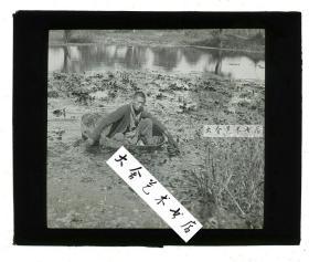 清末民国时期玻璃幻灯片-----民国时期上海江苏浙江一带,江南水乡池塘中坐木盆采摘菱角的年轻男子