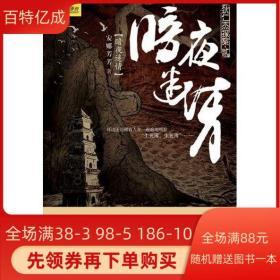 暗夜 安娜芳芳 重庆出版社 9787229020286