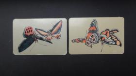1986年蝴蝶日历卡片