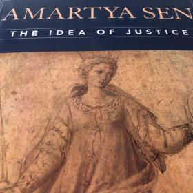 阿玛蒂亚•森《正义的理念》英文原版The Idea of Justice