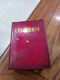 毛泽东思想胜利万岁(林像没剪)