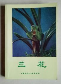 兰花  沈渊如、沈荫椿著 中国建筑工业出版社 1984年1版1印【品好】