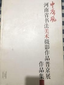 中原风河南省美术作品晋京展作品集