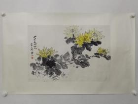 保真书画,北京著名画家万一《菊花傲霜图》花鸟画一幅,纸本镜心,尺寸45.5×67cm