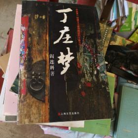 丁   庄    梦  阎连科  上海文艺出版社       【存放153层】