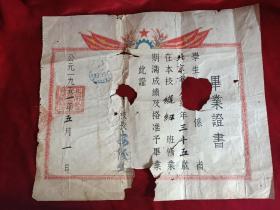 1951年北京私立文华职业学校毕业证