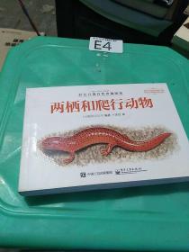 彩色口袋自然珍藏图鉴 两栖和爬行动物(全彩)