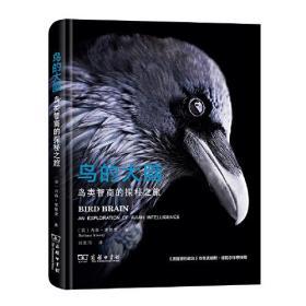 鸟的大脑 鸟类智商的探秘之旅