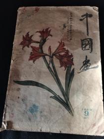 中国画1959年第9期