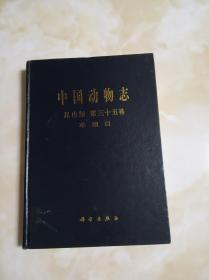 中国动物志.昆虫纲.第三十五卷.革翅目