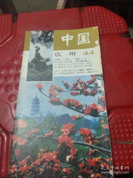 中國一瞥44(日文)
