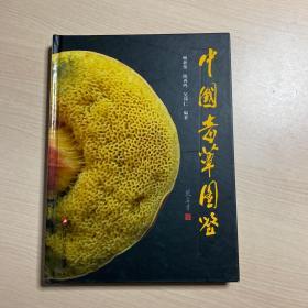中国毒蕈图鉴(精)/毒蘑菇识别与中毒防治(封底磨损,内页干净)