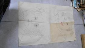 彩色素描画 儿童 小女孩(一张,66*43厘米)  L2