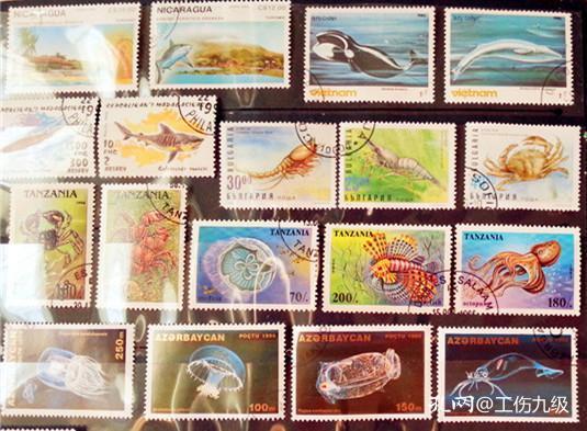 18枚外国海洋生物类邮票,票面精美,无重复!请注意图片