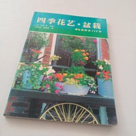 四季花艺盆栽
