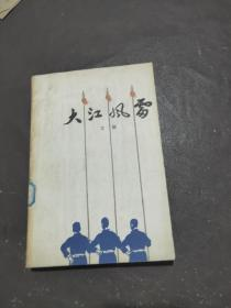 大江风雷 上册