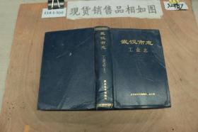武汉市志 工业志 上