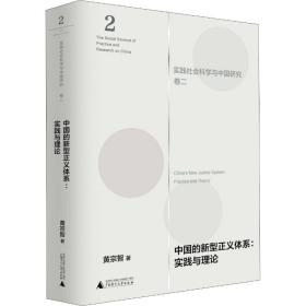 中国的新型正义体系:实践与理论(实践社会科学与中国研究·卷二)