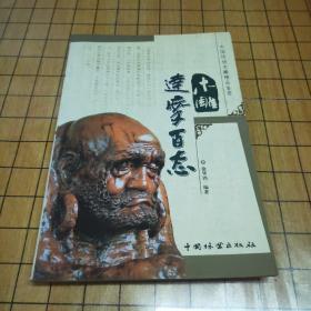 中国传统木雕精品鉴赏;木雕达摩百态