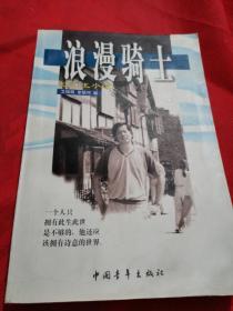 浪漫骑士:记忆王小波