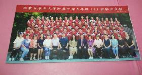 2019年6月13日内蒙古农业大学附属中学5年级(8班)毕业合影 30*15.2cm 85品