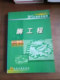 酶工程制药/现代生物技术制药丛书