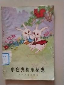 小白兔和小花兔