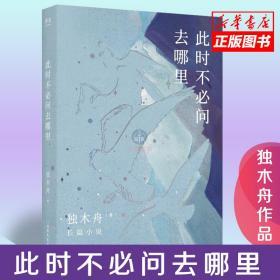 【正版現貨】此時不必問去哪里 獨木舟 金句女王  加成熟的寫作試煉 自我探索 有《三十而已》的 現實描繪 新華書店正版圖書