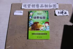 太阳鸟新课标大阅读第1辑精美插图注音版?绿野仙踪