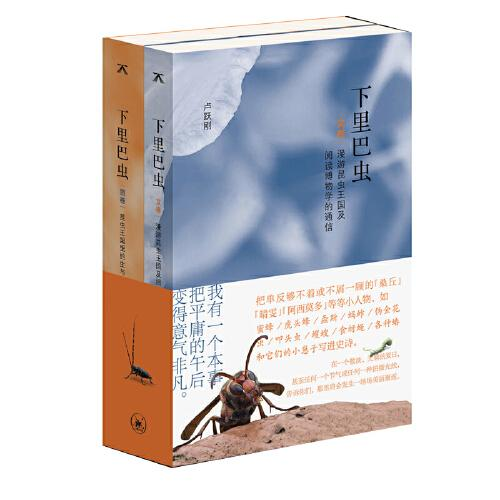 下里巴虫:昆虫王国