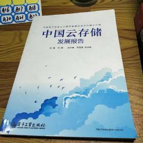 中国云存储发展报告