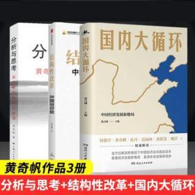 【正版全3册】 国内大循环+分析与思考+结构性改革 黄奇帆作品集全3册