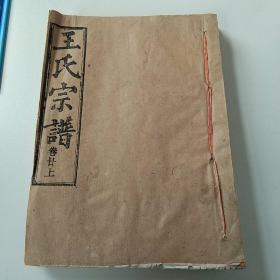 王氏宗谱(卷二十上)
