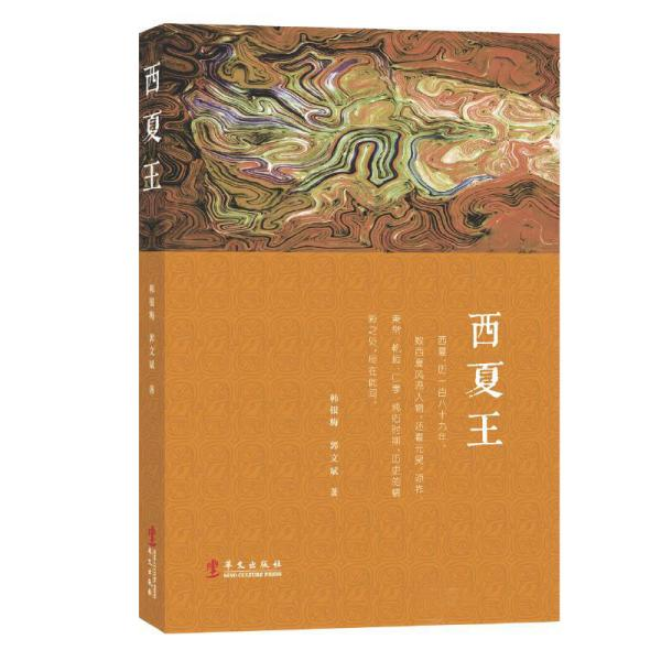 新书--西夏王