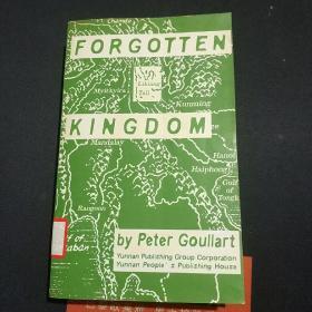 被遗忘的王国(英文版)