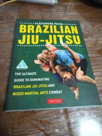 巴西格雷西柔术   jiu jitsu