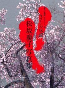 さくら伝説―松坂慶子写真集 (大型本) 樱花传说