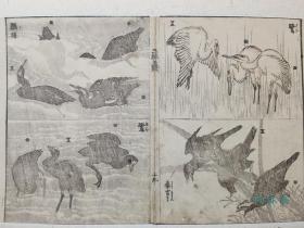 两百年博物画 葛饰北斋《三体画谱》3 鸟类 鸬鹚白鹭 16开木版水印双色摺 日本浮世绘 江户绘手本