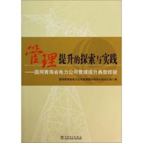 管理提升的探索與實踐 : 國網青海省電力公司管理提升典型經驗