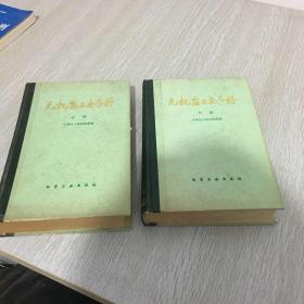 无机盐工业手册(上下)
