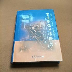 重庆街道乡镇概览