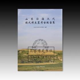 山东沿海汉代墩式封土墓考古报告集