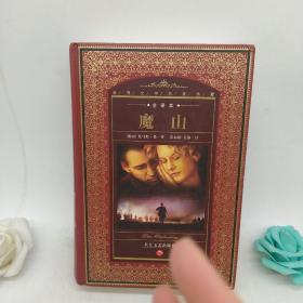 世界文学名著典藏:魔山(全译本)