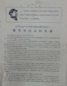 三月五日在广西大联筹赴穗代表团汇报大会上魏佑铸同志的讲话